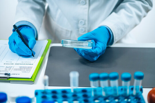 Food Quality Assessment in Microbiology Laboratory