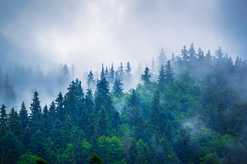 Photo sur Plexiglas Inde Misty mountain landscape
