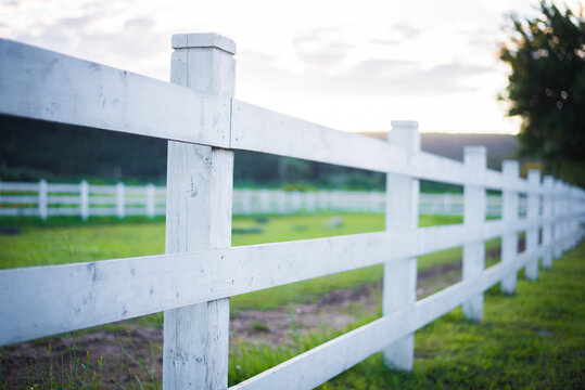 wooden white fence for horses