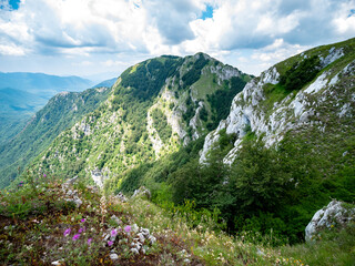 the top of mount Accellica Sud, Monte Raione. Picentini Natural Park, Giffoni Valle Piana, Campania, Salerno, Italy