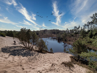 Seven years temporary lakes in Randboel Frederikshaab, Denmark