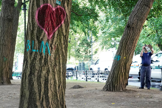 """A heart and a BLM sign are spray painted on a tree as a worker takes pictures of other trees after police dismantled the """"City Hall Autonomous Zone"""" that was in support of the Black Lives Matter movement in the Manhattan borough of New York City"""