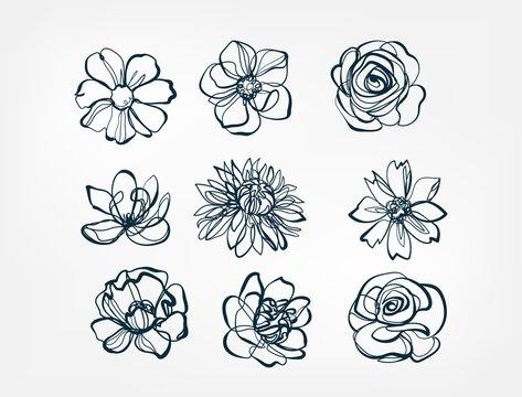flower set line one art isolated vector illustration