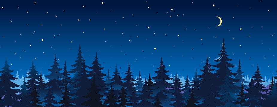 Tops of spruce trees on night sky background, dark dense coniferous forest at night, panorama of night sky with stars and new moon in forest, dangerous forest landscape, observation of the stars