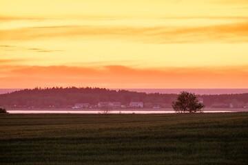 Foto op Plexiglas Zwavel geel Wicie na tle jeziora Kopań i morza