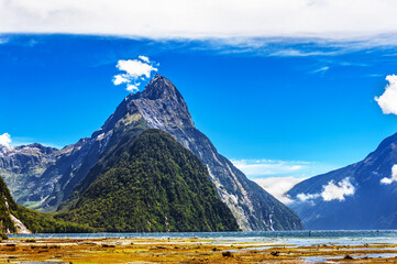 Low Tide in Milford Sound in New Zealand