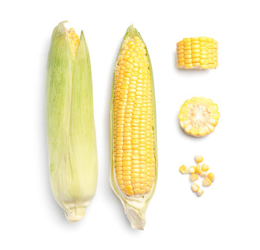 Fresh corn cobs on white background