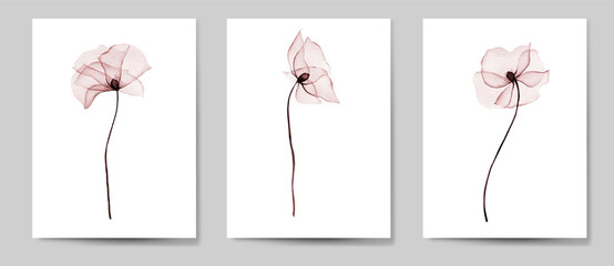 Obraz Card_2Card with flowers,  poppies  perfect quality and graphic of elements let you create wedding invitations, wedding stationery, wrappers, fashion textile, textures, posters, wedding decor - fototapety do salonu