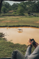 Anonymous male traveler taking picture of yellow billed stork standing in dirty lake and drinking water