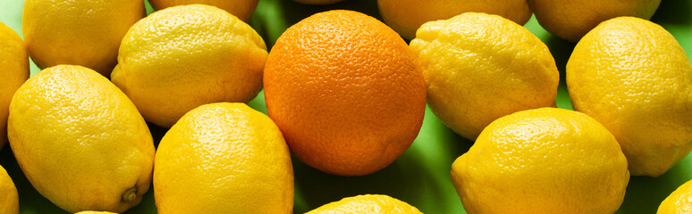 fresh ripe yellow lemons and orange on green background, panoramic crop