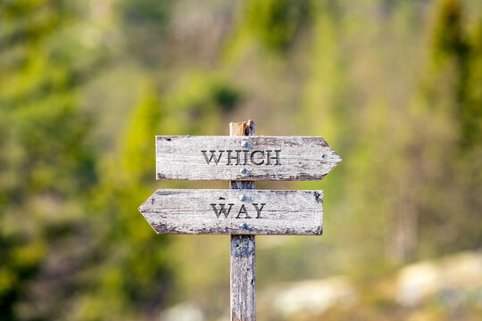 which way text carved on wooden signpost outdoors in nature. Green soft forest bokeh in the background.