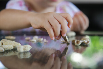 Toddler girl eating peanuts in shell on the kitchen table