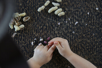 Top view of child's hands and peanuts in shell on the kitchen table