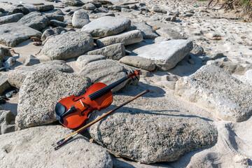 Violin at the sea rock background