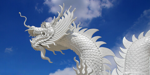 white dragon with beautiful sky background