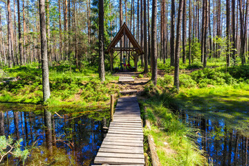 Small shed for tourists among swamp area in green forest near Nowy Targ town, Podhale region, Poland