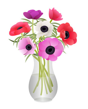 Bouquet of Anemone Flowers in Glass Vase