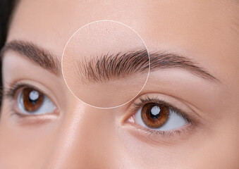 Eyebrows of a young teenager girl after plucking and cutting close-up. The make-up artist will do...