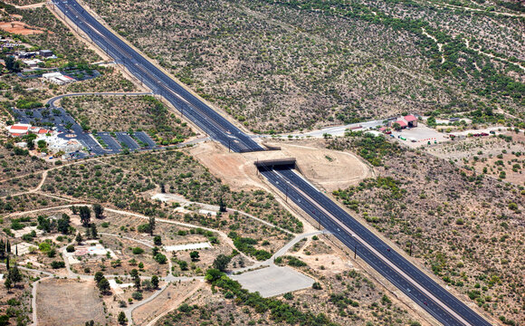 Wildlife Bridge near Tucson, Arizona