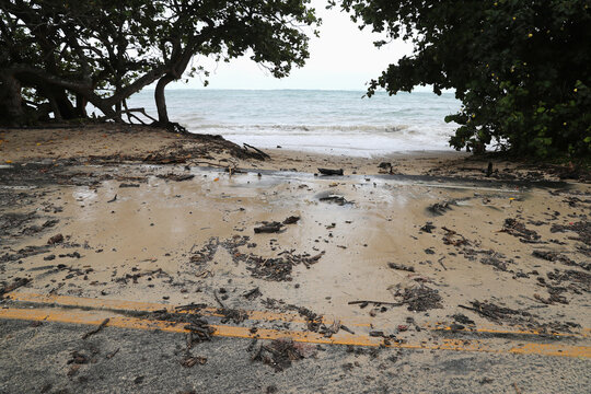 Beach debris washes up on the road in Kaaawa