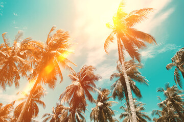 Copy space of tropical palm tree with sun light on sky background. Wall mural