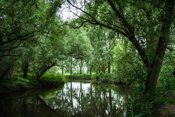 View of the river. Colorful landscape park with beautiful trees and water in provinces Noord...