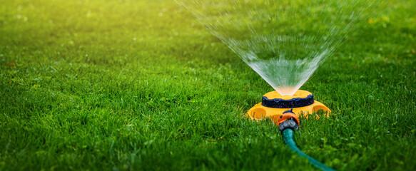Fototapeta garden equipment - water sprinkler watering lawn at home backyard. banner copy space obraz