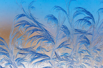 Natural pattern on glass at dawn of the sun.