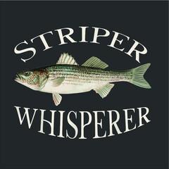 Striper Whisperer Striped Bass Fish Illustration Fishing vector design illustrator eps new