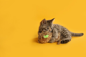 Poster Montagne Cute tabby kitten with toy on yellow background, space for text. Baby animal