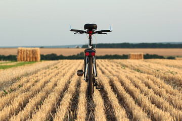 Bicycle in a harvested wheat field