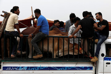 Eid al-Adha amid novel coronavirus pandemic in Karachi