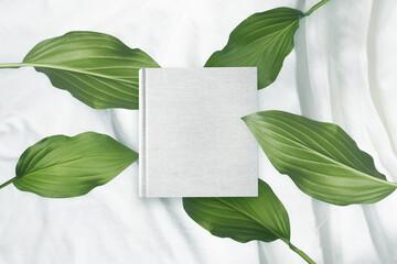 白背景の生成りの生地のアルバム冊子と植物グリーン