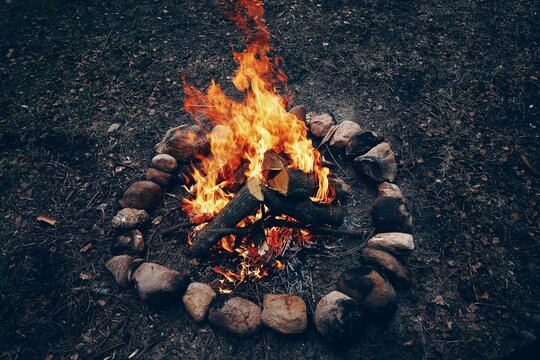 Bright campfire in the nature. High quality photo