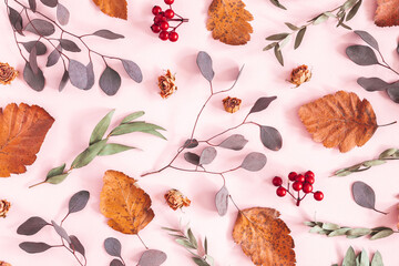 Autumn composition. Pattern made of dried leaves, flowers on pink background. Autumn, fall concept. Flat lay, top view