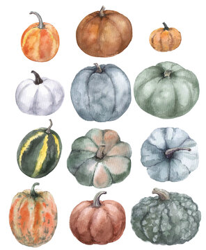 Set of watercolor pumpkins on the white background. Orange, green and white pumpkins. Illustration for logo, print graphics, postcards and scrapbooking