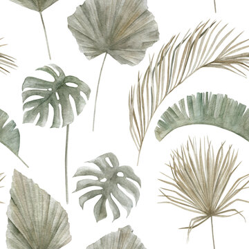 Jungle seamless pattern with tropical palm leaves on white background. Hand drawn summer illustration. Vintage floral print