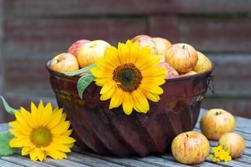 alte Guglhupfform mit Sonnenblume und Äpfeln als Dekoration