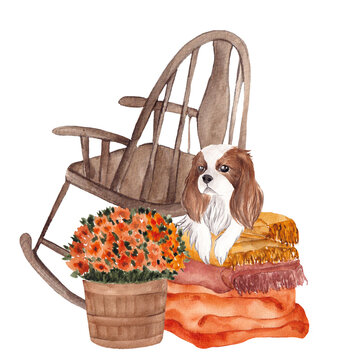 Watercolor autumn illustration with Spaniel dog and floral, isolated on white background