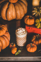 Pumpkin spice latte coffee drink topped with whipped cream and cinnamon in tall glass among fresh pumpkins and persimmons. Seasonal Autumn hot warming sweet drink