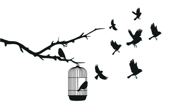 birds emerge from a cage that depends on a tree, black illustration on white background vector illustration