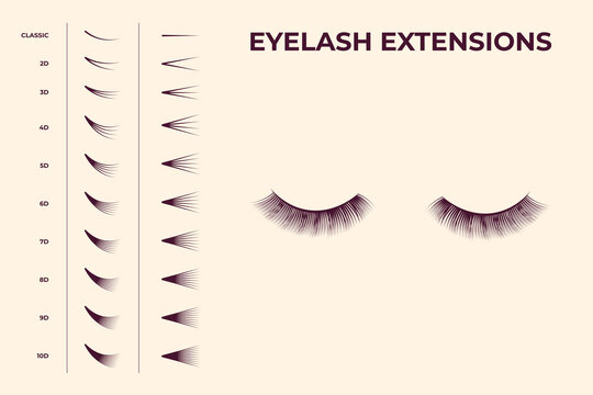 Eyelash volume boost set. Fake eyelashes cluster collection for extension process infographics and guides. Flat vector illustrations