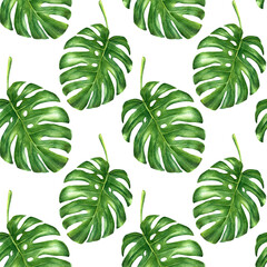Watercolor monstera leaves hand drawn seamless  pattern.