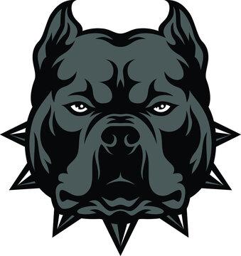 Head of Aggressive American Bully Dog