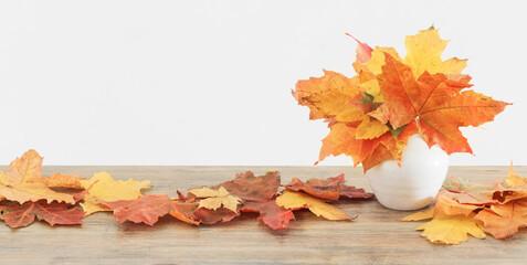 autumnal leaves in white vase on white background
