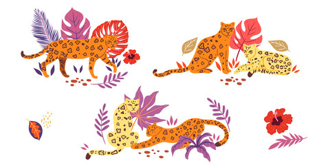 Collection of leopards and tropical leaves isolated on white background. Vector graphics.