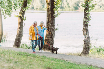 Selective focus of smiling senior woman walking near husband and pug dog on leash in park during summer