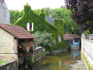 bucolic view of an ivy-covered house near a small river