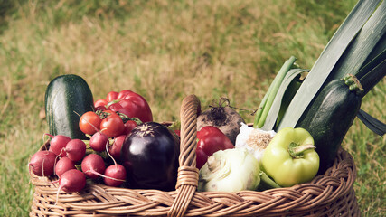 Wicker basket with fresh natural vegetables on a background of green lawn. Selective focus
