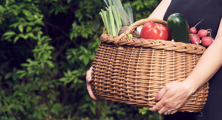 Farmer woman holding wicker basket full of fresh raw vegetables. Basket with vegetable in the hands outdoors. Cucumber, zucchini, beet, kohlrabi, garlic, carrot, potato, tomato, onion. Selective focus